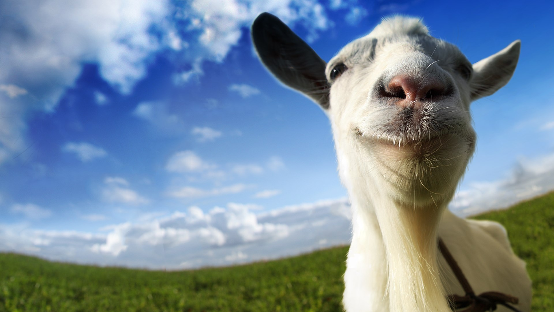 Goat Simulator - Steam